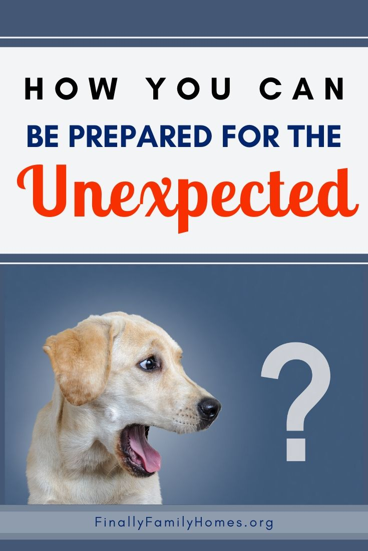 image of dog looking at a question mark - how you can be prepared for the unexpected